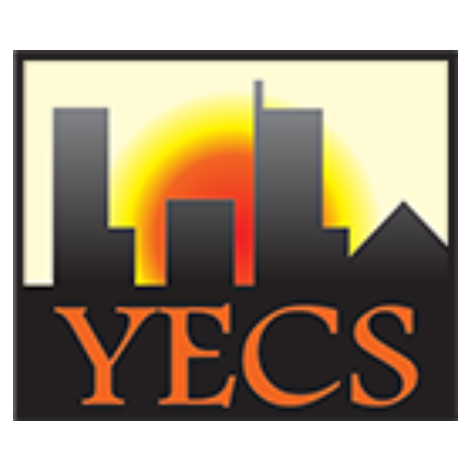 Young Engineering Consultancy Services